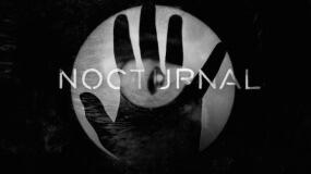 Amaral desvela portada y tracklist de 'Nocturnal'