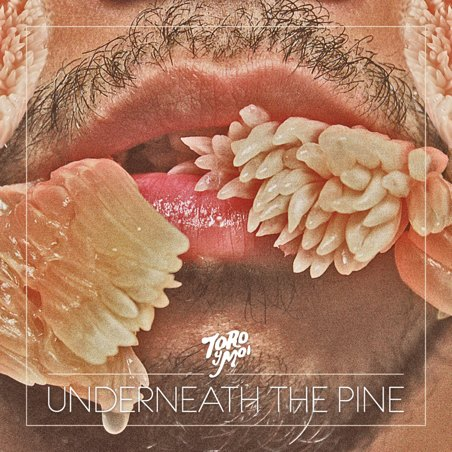 Toro y Moi - Underneath the pie