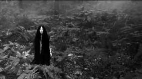 Feist estrena nuevo videoclip y no sabemos si es una secuela de The Ring