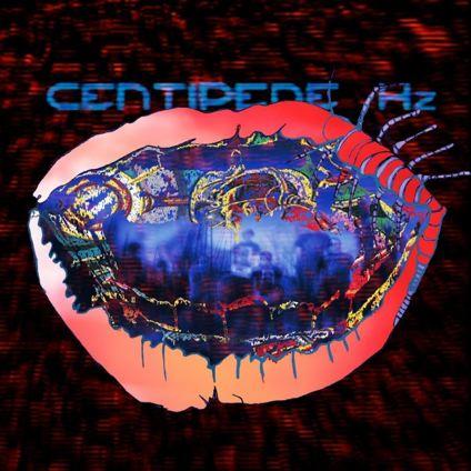Animall Colective - Centipede Hz