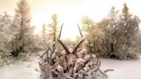 Dave Grohl dirige el nuevo videoclip de Soundgarden – By Crooked Steps