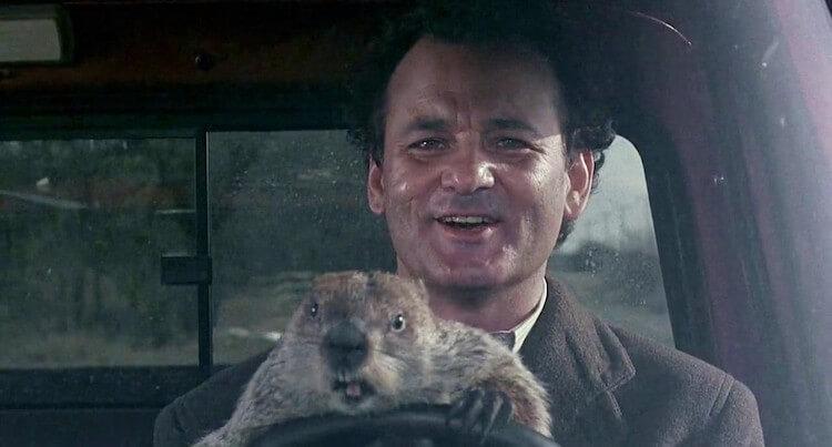 Bill Murray - El día de la marmota