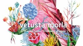 Vetusta Morla – Mismo sitio, distinto lugar [Crítica]